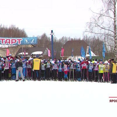 Более тысячи лыжников и нешуточная борьба: в Ярославле прошла 38-я «Лыжня России»