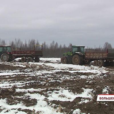 По факту складирования куриного помета в деревне Кузьминское началась проверка