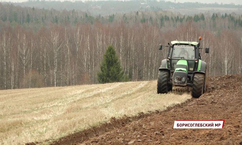 Природные аномалии вносят коррективы в график посевных работ в Ярославской области