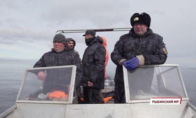 Рыбалка закончена: в Ярославской области начался нерест