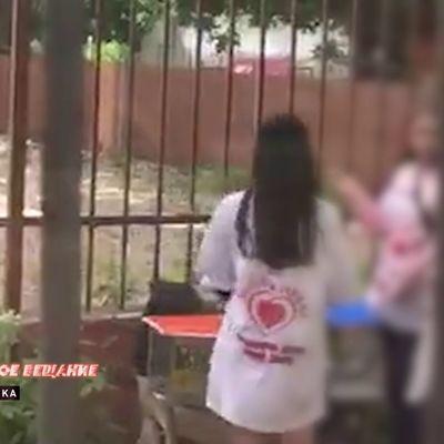 Волонтеров благотворительного фонда поймали на воровстве