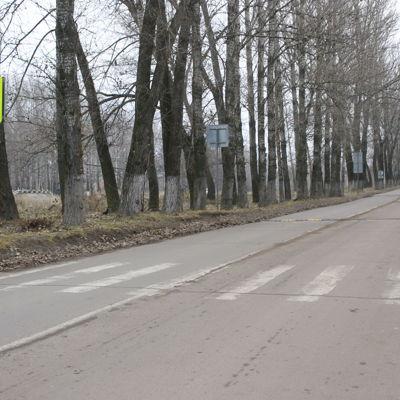 Синоптики прогнозируют россиянам аномальную зиму