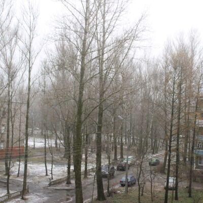 В МЧС предупредили ярославцев о дождях и сильной оттепели