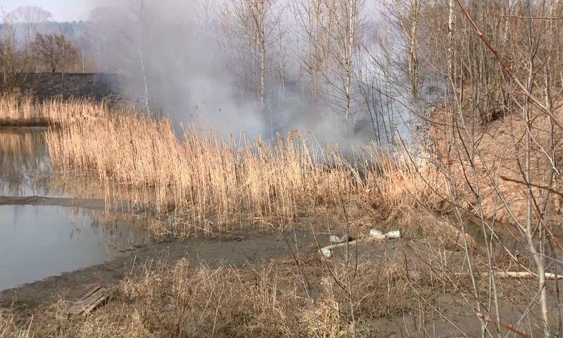 По 80 выездов за сутки: в Ярославской области сложилась крайне сложная ситуация из-за пала травы