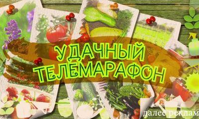 «Первый Ярославский» в преддверии дачного сезона провел «УДачный телемарафон»