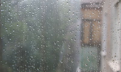 Длинные майские выходные ярославцам планируют испортить дожди и аномальный холод