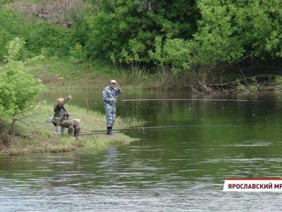 Следов загрязнения не выявили, но нашли тело бобра: итоги проверки по факту радужных пятен на реке Ить