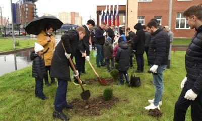 У школы №91 Ярославля стало зеленее: здесь заложили «Аллею знаний»