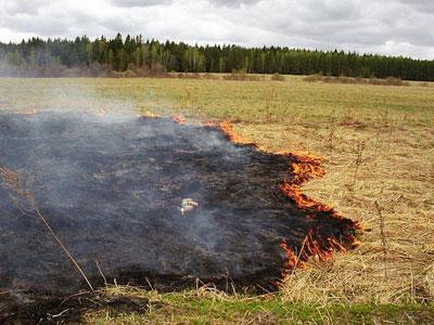 Начался сезон травяных пожаров