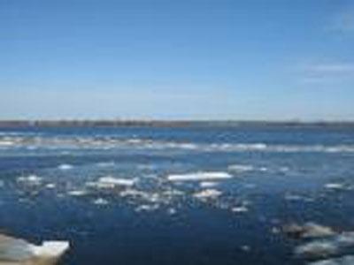 На берегу Волги нашли тело молодой девушки