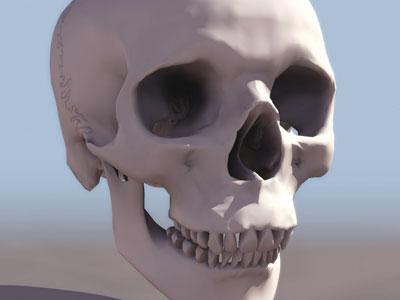 Детский череп в гаражах