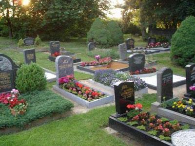 Проверка кладбищ