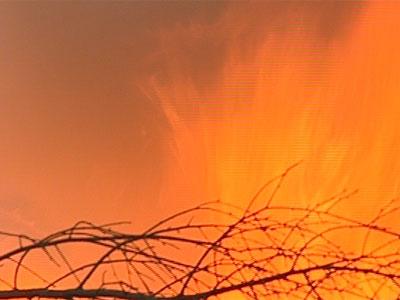 Взрыв на битумном заводе: уголовного дела не будет