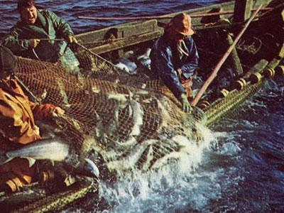 Рыбное дело на озере Неро