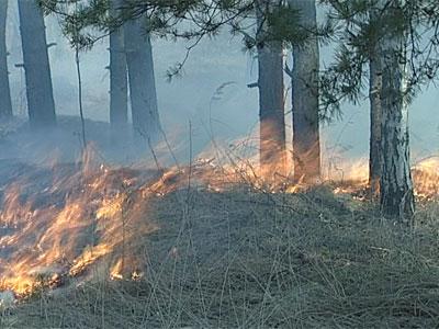 Новые травяные пожары