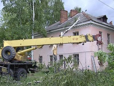 На крышу дома упало дерево