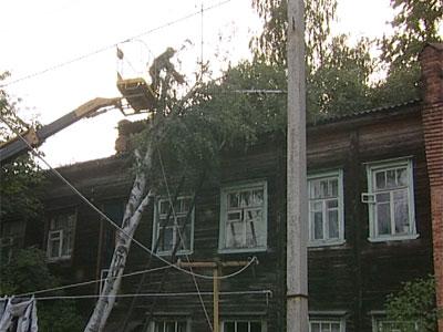 На крышу дома упала береза