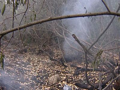 В Заволжском районе горит торф