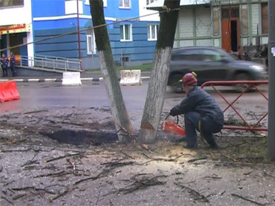 Из-за прорыва канализации подмыло корни деревьев