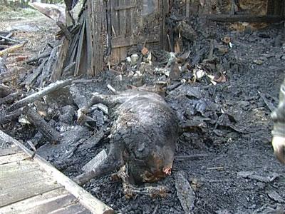 Пожар на улице Балашова