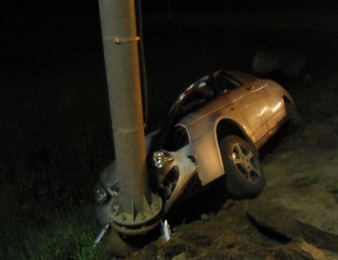 ДТП по вине лося: водитель и животное погибли