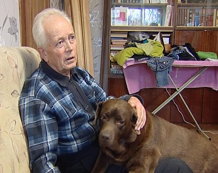 Собака-поводырь - это основной помощник слабовидящего человека