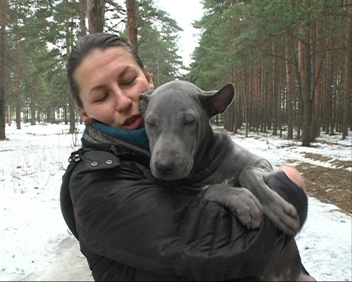 Искали щенка стоимостью почти сто тысяч рублей