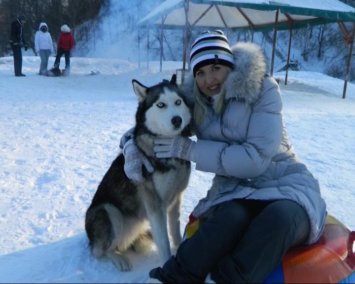 Догхантеры отравили собак в Кармановском