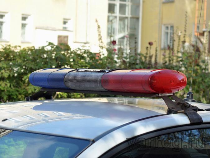 Два ярославца украли четыре улья с частной пасеки