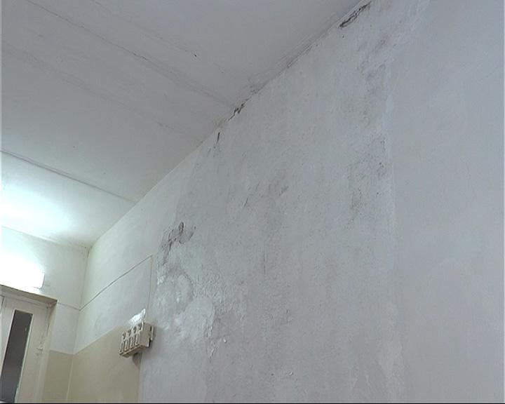 В родильном отделении обнаружена плесень на стенах