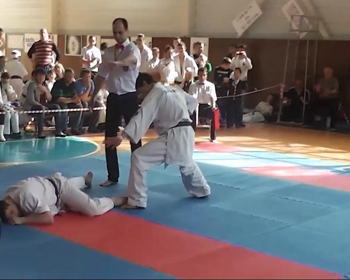 Команда Ярославской области удачно выступила на первенстве России по ашихара-каратэ