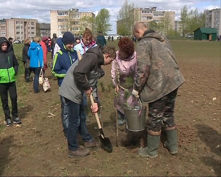 Всемирный День посадки деревьев
