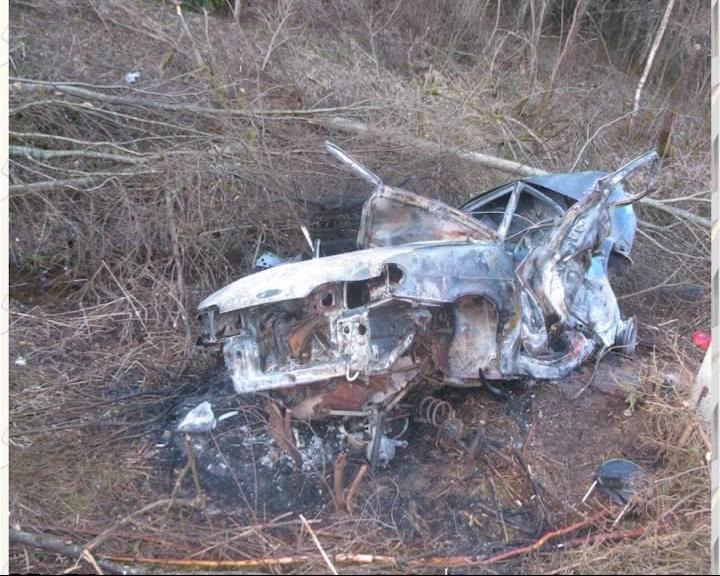 Водитель погиб из-за лося
