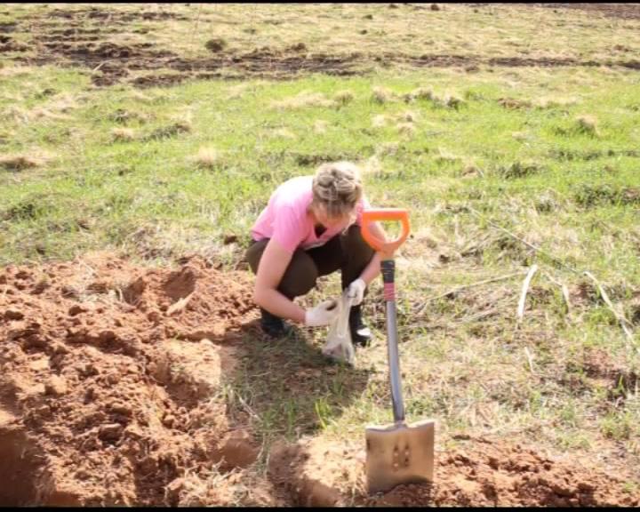 Вернулся отряд «Поиск»: ярославские поисковики нашли останки 22-х солдат