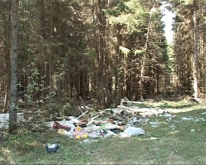 Территория возле Данилова превратилась в помойку
