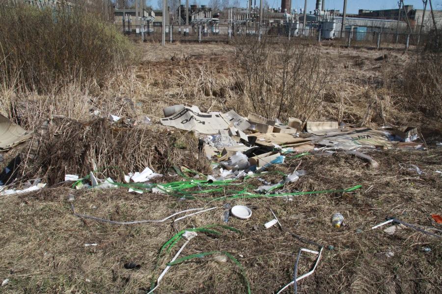 В Рыбинске нашли организатора несанкционированной свалки