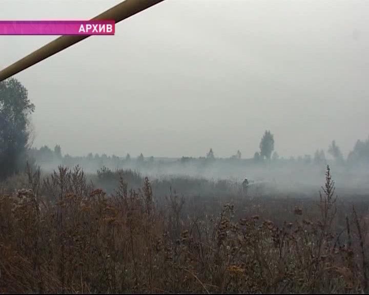В Угличском районе горят леса