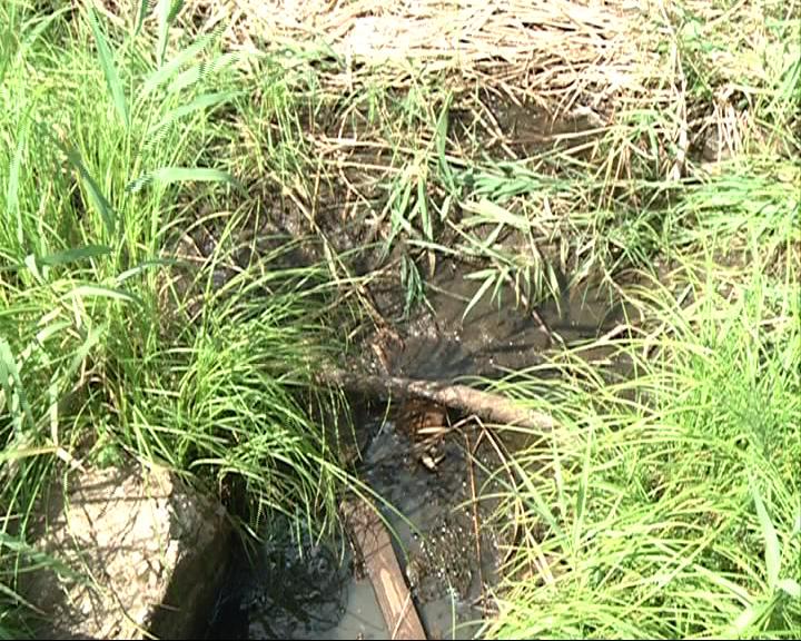 Засыпали реку грунтом, чтобы проезжать на стройку..