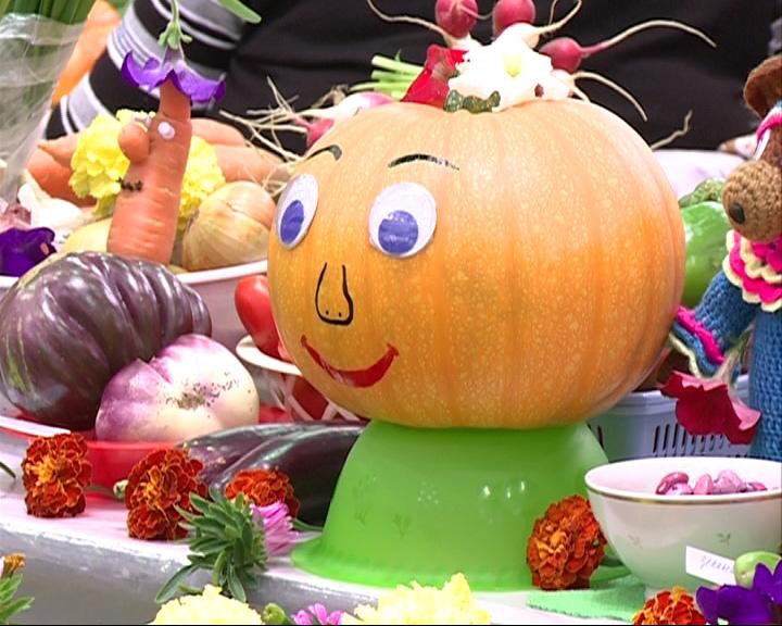 Открылась ежегодная выставка-ярмарка «Сады-огороды»