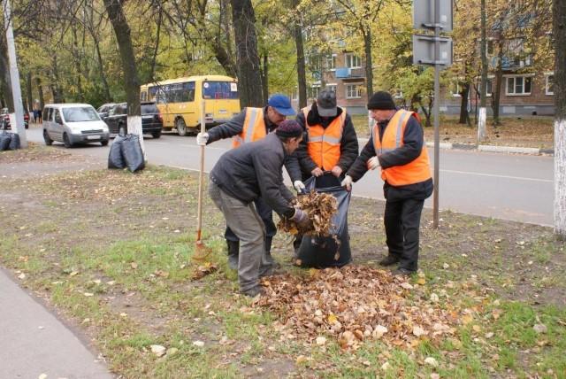 В Ярославле решили дать бой опавшей листве