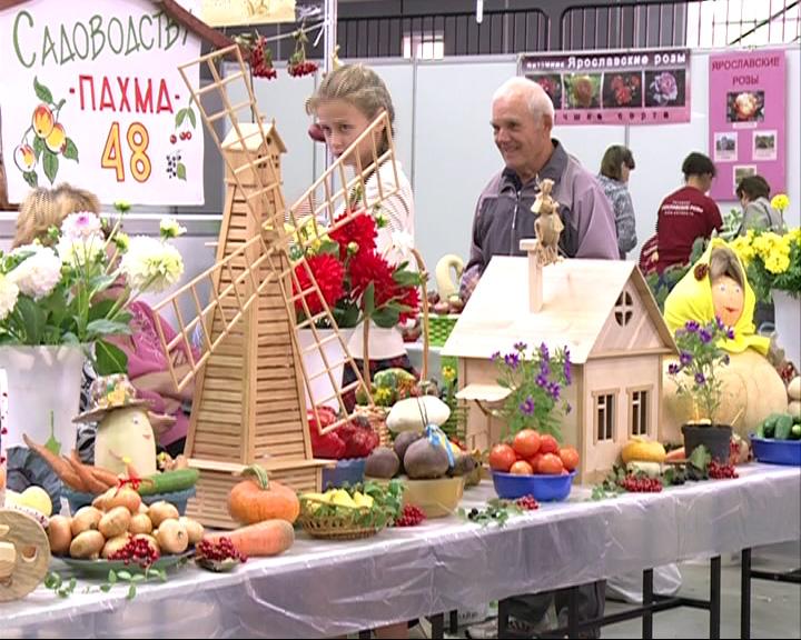 Ярославская область успешно справляется с импортозамещением продуктов