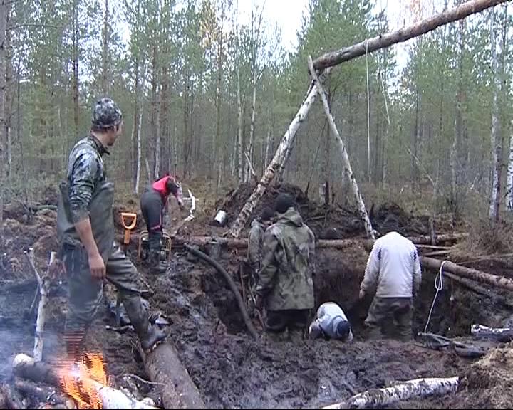В болотах Некоузского района нашли боевой самолет Великой Отечественной войны