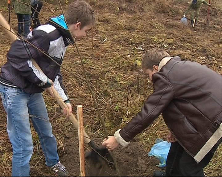 В Ярославской области посадили аллею лип в память о Леониде Сабанееве