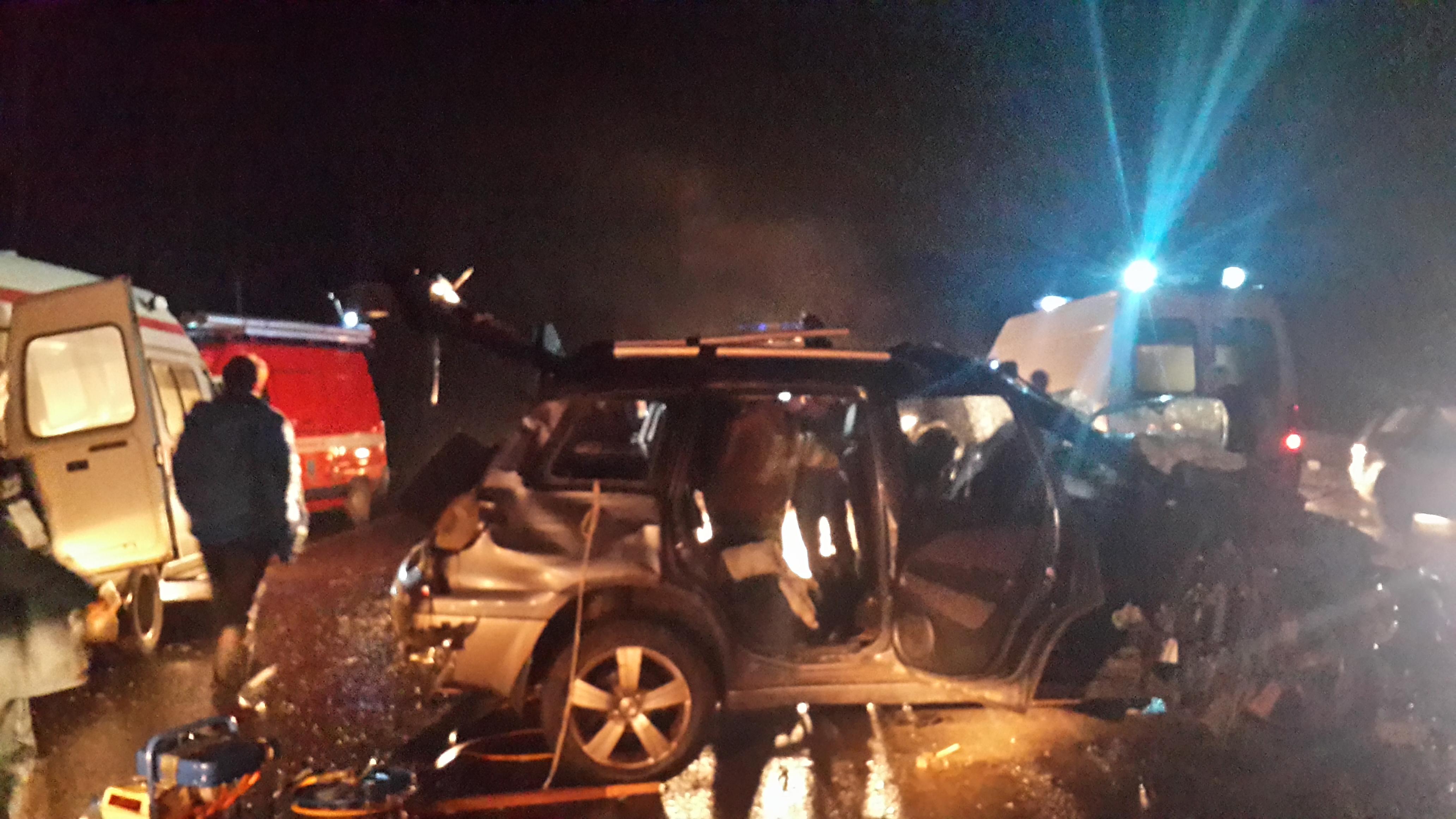 Из-за выбежавшего на трассу лося в Тутаевском районе произошла крупная авария