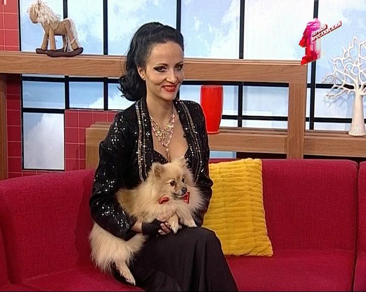 Дама с собачкой.. собачками и попугаем