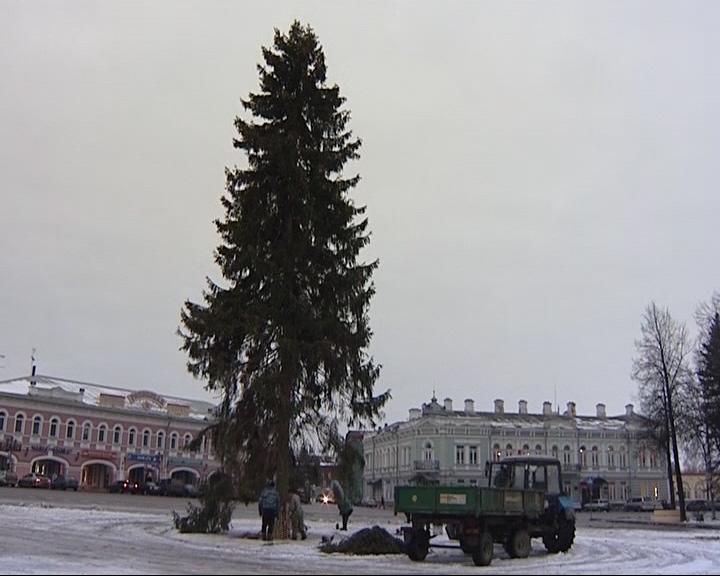В Угличе установили главную елку города