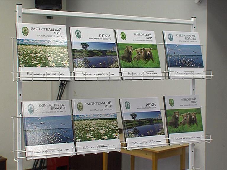 В библиотеке имени Некрасова презентовали новые книги из серии «Библиотека ярославской семьи»