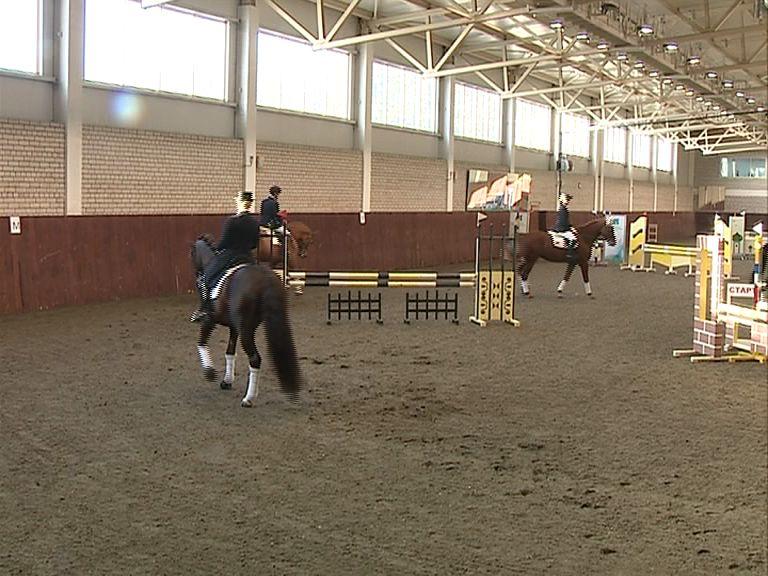 У ярославской конно-спортивной школы появится новая гостевая конюшня