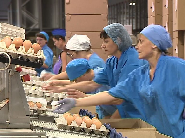Цены на яйца к Пасхе обещают не поднимать