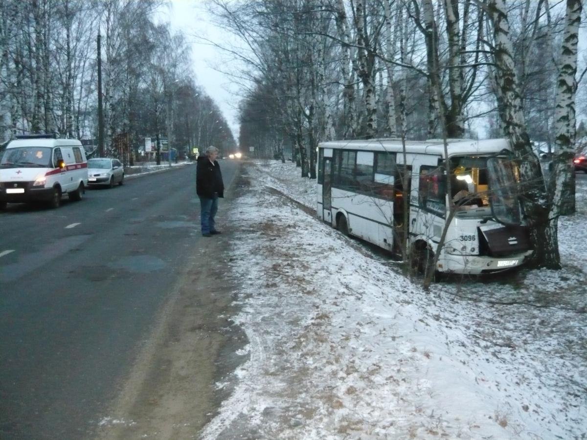 Из-за плохого самочувствия водитель автобуса врезался в дерево